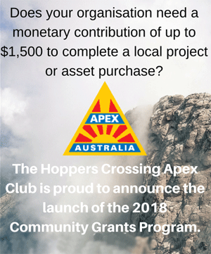 Apex Community Grants information